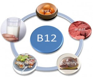 Sources of B12